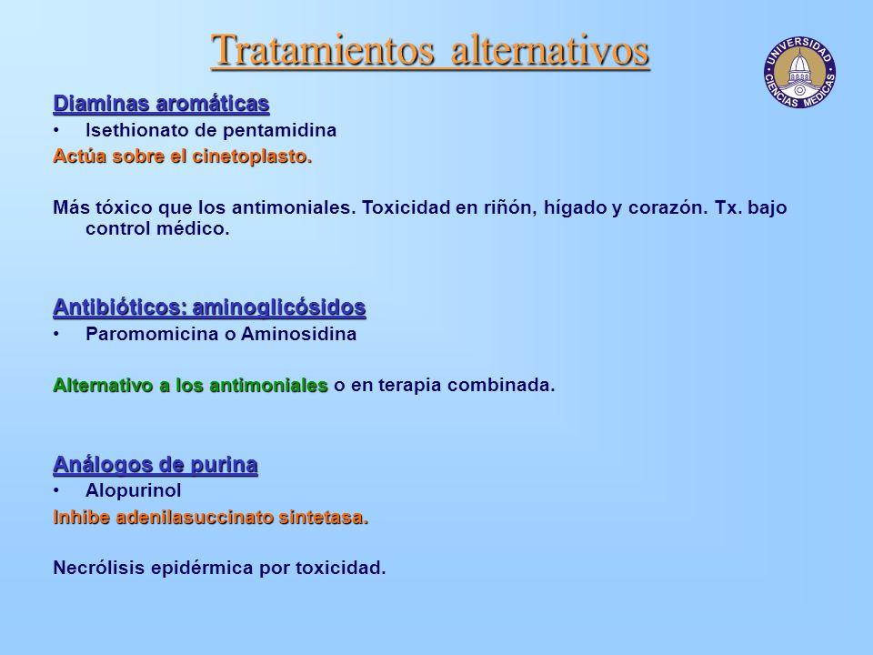 Tratamientos alternativos Diaminas aromáticas Isethionato de pentamidina Actúa sobre el cinetoplasto. Más tóxico que los antimoniales. Toxicidad en ri