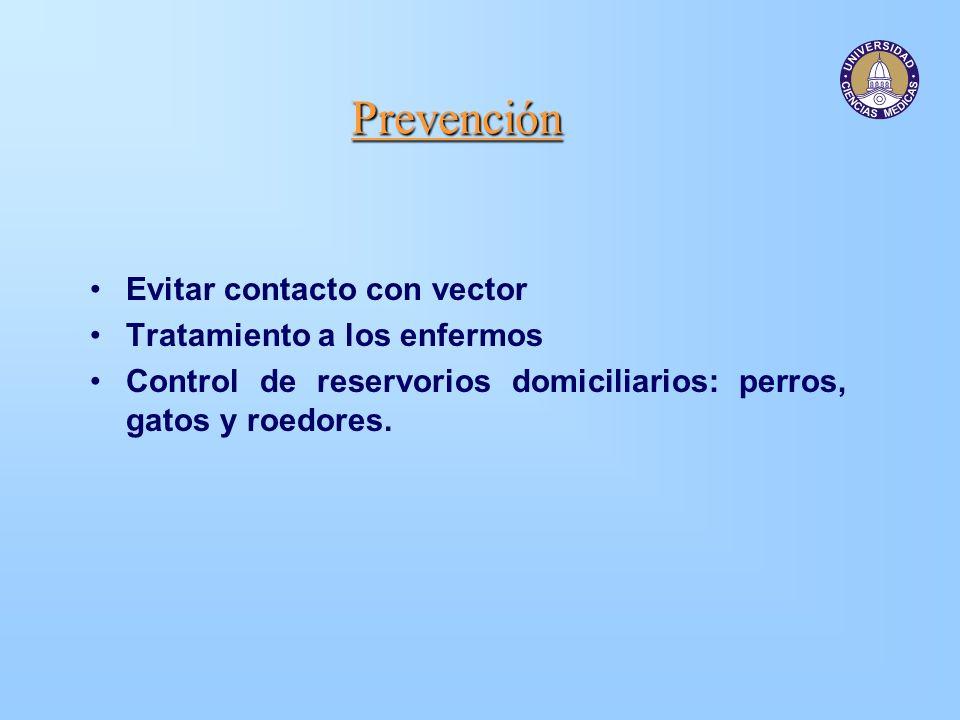 Prevención Evitar contacto con vector Tratamiento a los enfermos Control de reservorios domiciliarios: perros, gatos y roedores.