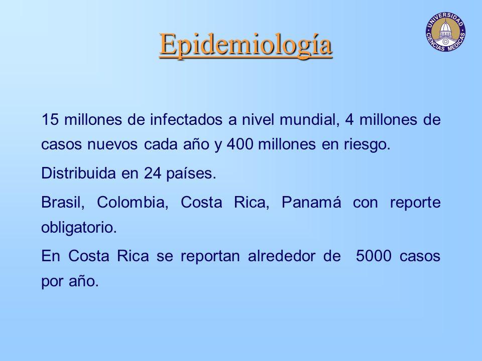Epidemiología 15 millones de infectados a nivel mundial, 4 millones de casos nuevos cada año y 400 millones en riesgo. Distribuida en 24 países. Brasi