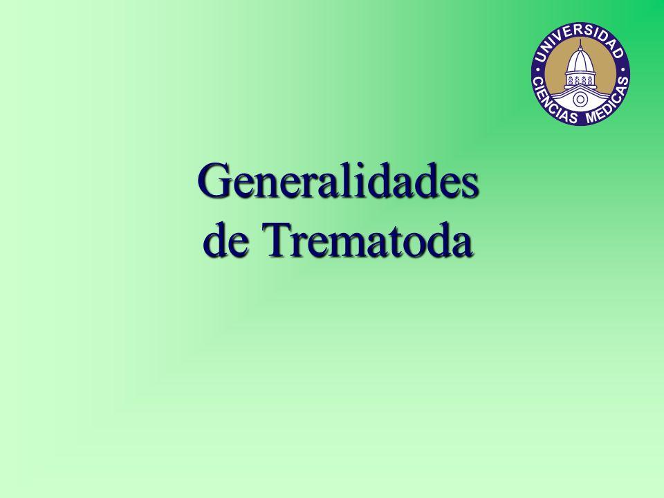 Generalidades de Trematoda