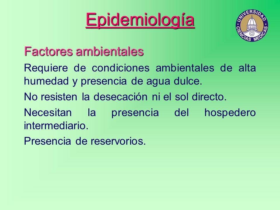 Epidemiología Factores ambientales Requiere de condiciones ambientales de alta humedad y presencia de agua dulce. No resisten la desecación ni el sol