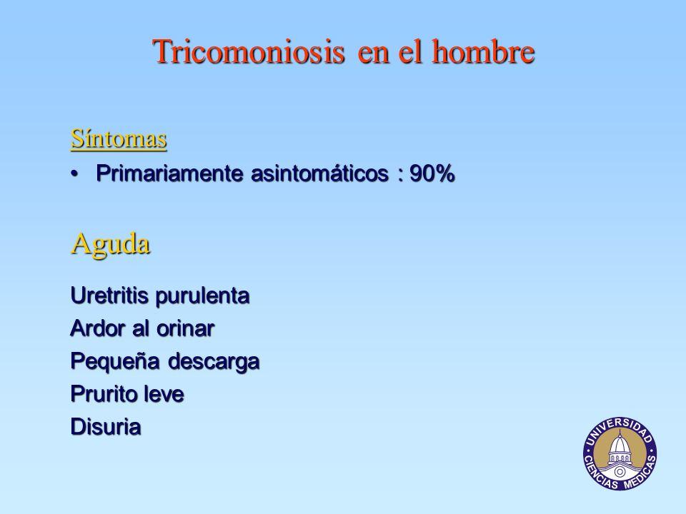 Tricomoniosis en el hombre Síntomas Primariamente asintomáticos : 90%Primariamente asintomáticos : 90% Aguda Uretritis purulenta Ardor al orinar Peque