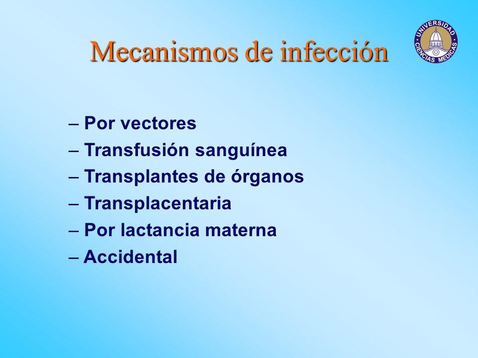 Mecanismos de infección – Por vectores – Transfusión sanguínea – Transplantes de órganos – Transplacentaria – Por lactancia materna – Accidental