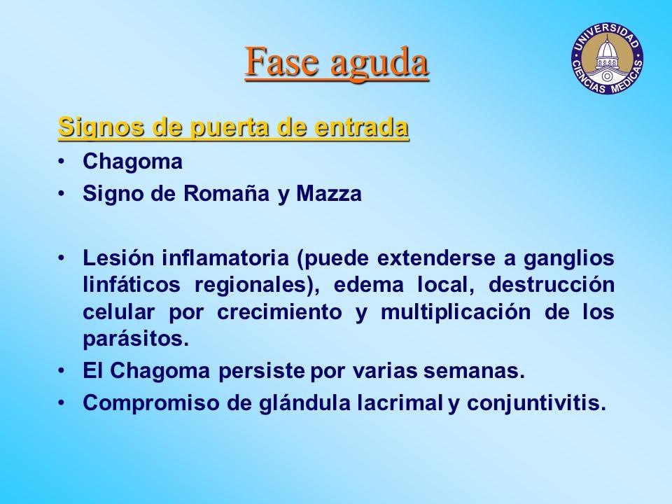 Fase aguda Signos de puerta de entrada Chagoma Signo de Romaña y Mazza Lesión inflamatoria (puede extenderse a ganglios linfáticos regionales), edema