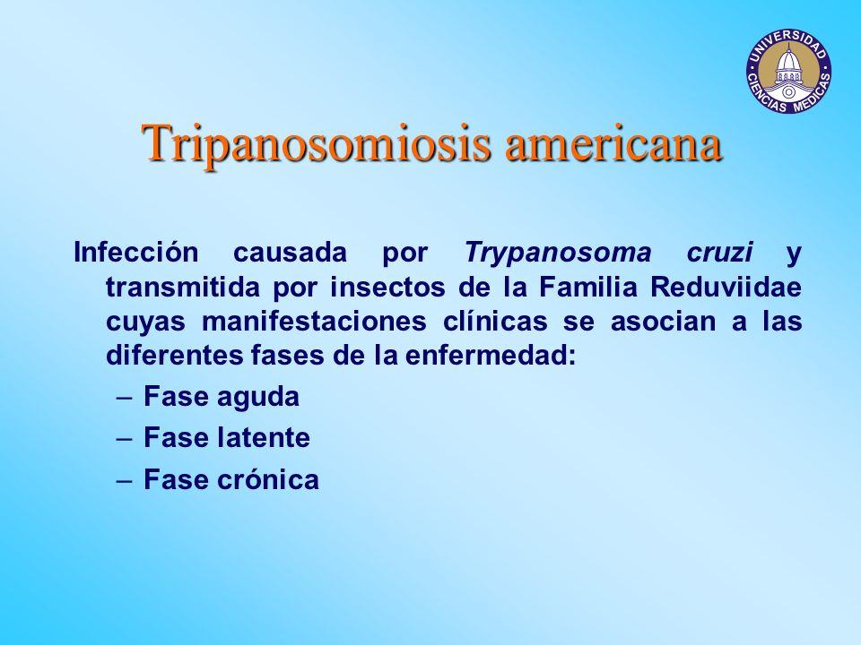 Tripanosomiosis americana Infección causada por Trypanosoma cruzi y transmitida por insectos de la Familia Reduviidae cuyas manifestaciones clínicas s