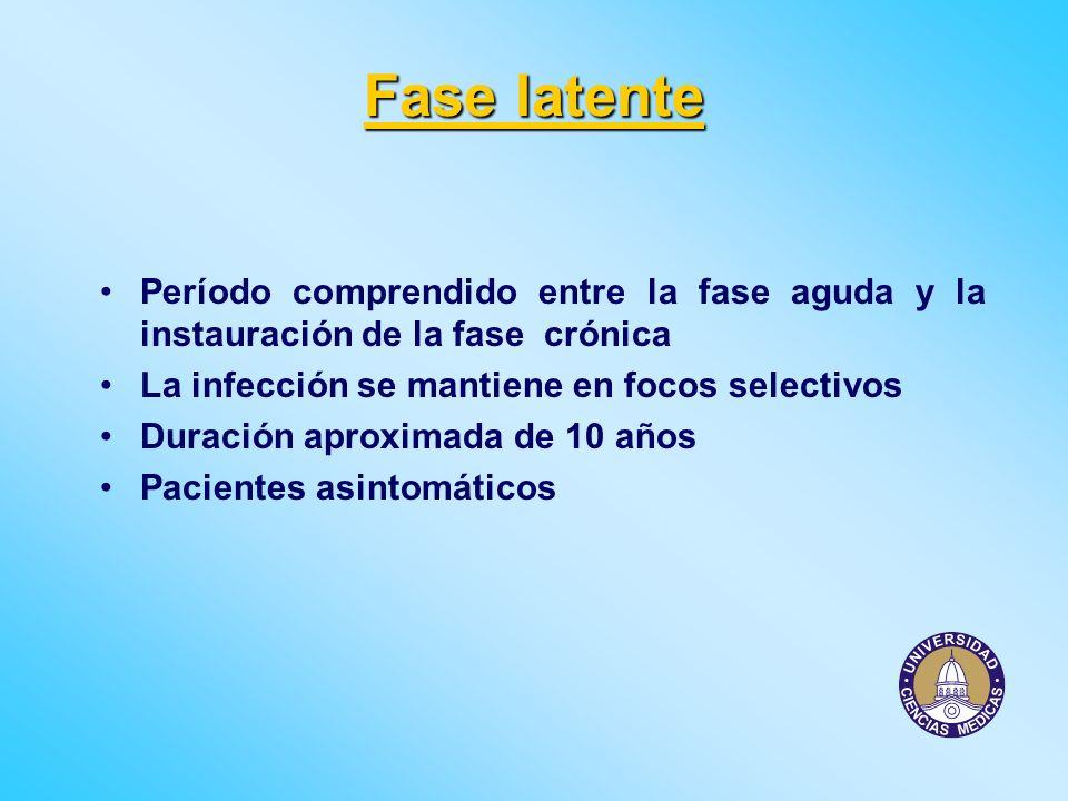 Fase latente Período comprendido entre la fase aguda y la instauración de la fase crónica La infección se mantiene en focos selectivos Duración aproxi