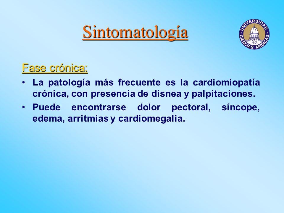 Sintomatología Fase crónica: La patología más frecuente es la cardiomiopatía crónica, con presencia de disnea y palpitaciones. Puede encontrarse dolor