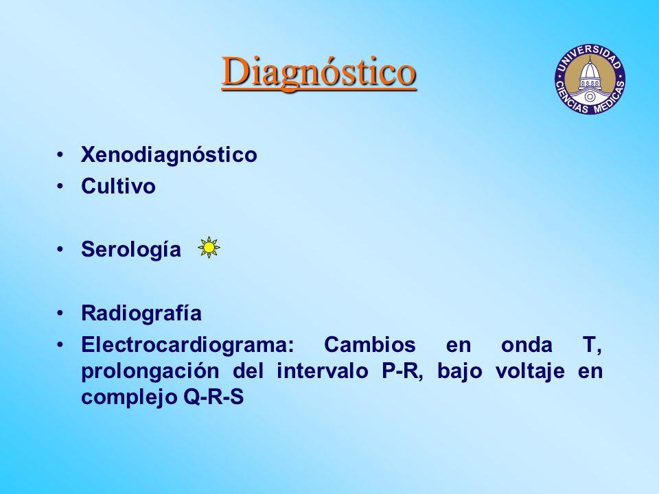 Diagnóstico Xenodiagnóstico Cultivo Serología Radiografía Electrocardiograma: Cambios en onda T, prolongación del intervalo P-R, bajo voltaje en compl