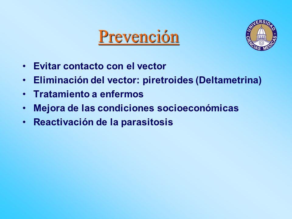 Prevención Evitar contacto con el vector Eliminación del vector: piretroides (Deltametrina) Tratamiento a enfermos Mejora de las condiciones socioecon