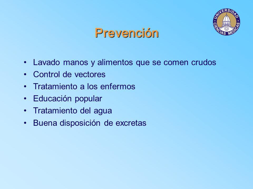 Prevención Lavado manos y alimentos que se comen crudos Control de vectores Tratamiento a los enfermos Educación popular Tratamiento del agua Buena di
