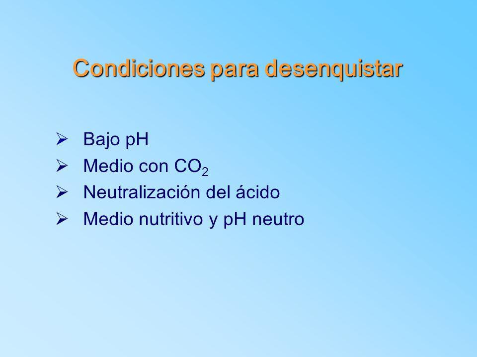 Condiciones para desenquistar Ø Bajo pH Ø Medio con CO 2 Ø Neutralización del ácido Ø Medio nutritivo y pH neutro