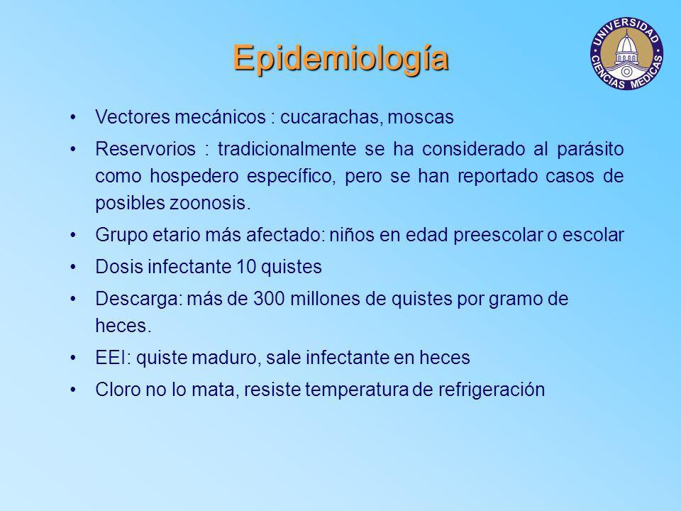 Aspectos clínicos Asintomáticos Giardiosis aguda Giardiosis subaguda Giardiosis crónica