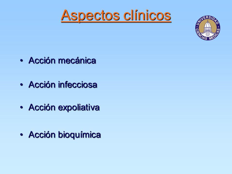 Acción mecánicaAcción mecánica Acción infecciosaAcción infecciosa Acción expoliativaAcción expoliativa Acción bioquímicaAcción bioquímica Aspectos clínicos