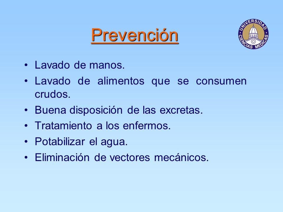 Prevención Lavado de manos.Lavado de alimentos que se consumen crudos.