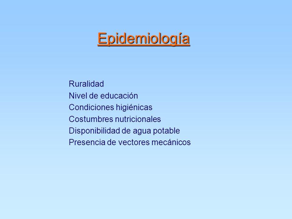 Epidemiología Ruralidad Nivel de educación Condiciones higiénicas Costumbres nutricionales Disponibilidad de agua potable Presencia de vectores mecánicos