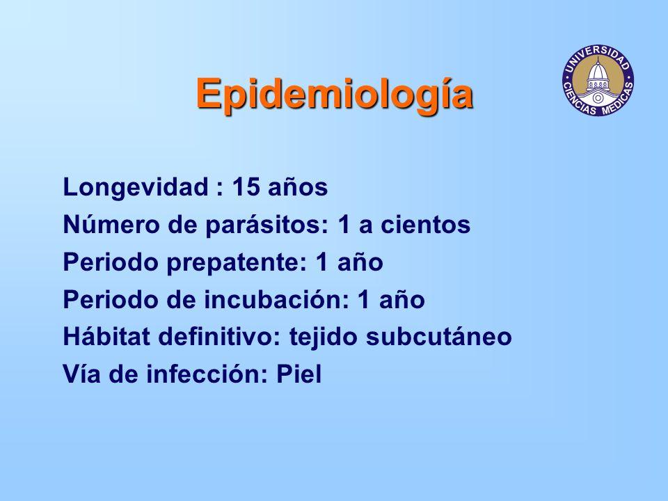 Epidemiología Longevidad : 15 años Número de parásitos: 1 a cientos Periodo prepatente: 1 año Periodo de incubación: 1 año Hábitat definitivo: tejido