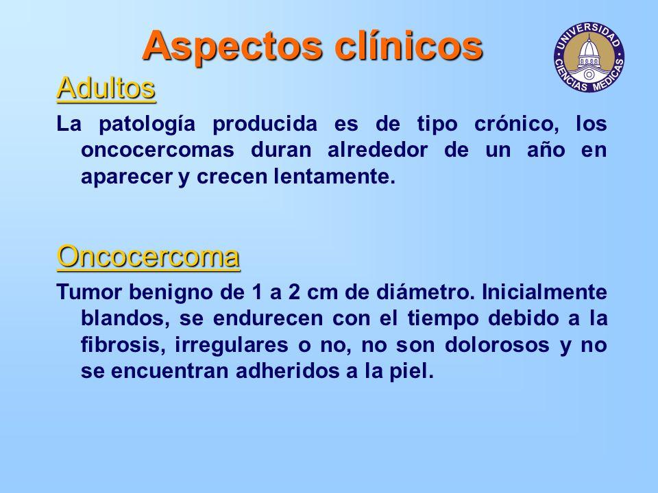 Aspectos clínicos Adultos La patología producida es de tipo crónico, los oncocercomas duran alrededor de un año en aparecer y crecen lentamente.Oncoce