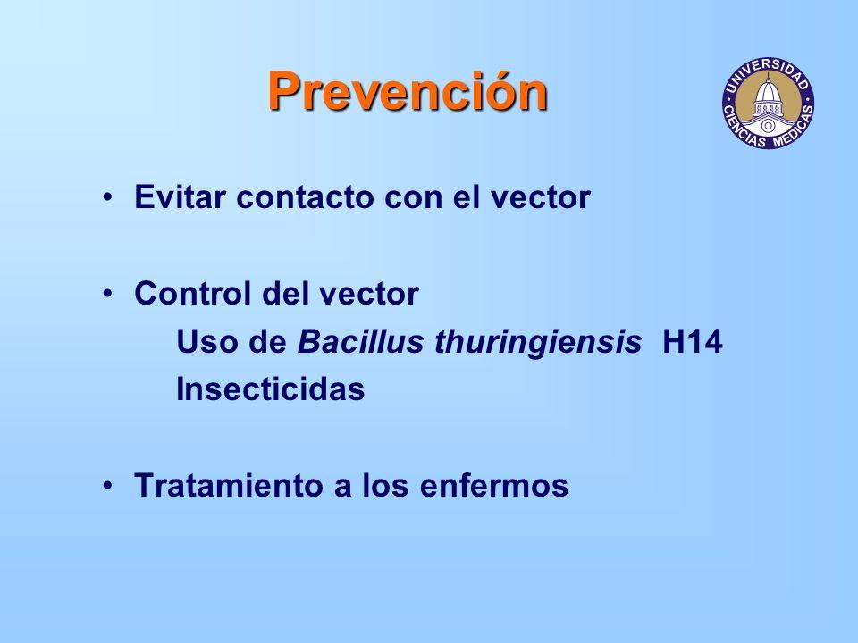 Prevención Evitar contacto con el vector Control del vector Uso de Bacillus thuringiensis H14 Insecticidas Tratamiento a los enfermos