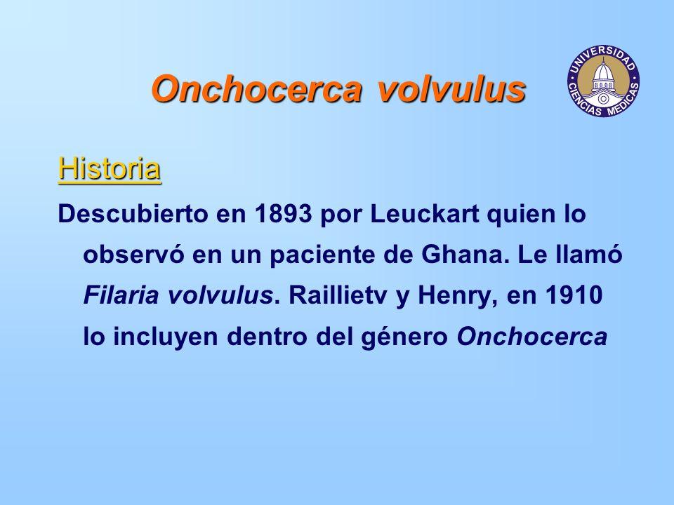 Onchocerca volvulus Historia Descubierto en 1893 por Leuckart quien lo observó en un paciente de Ghana. Le llamó Filaria volvulus. Raillietv y Henry,