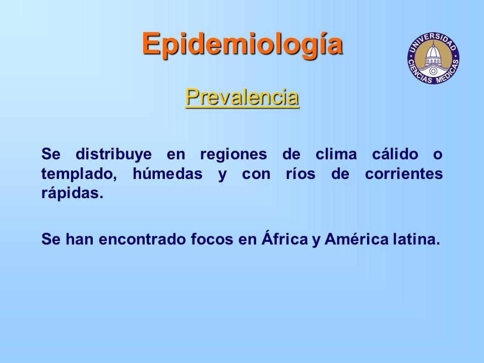 Epidemiología Prevalencia Se distribuye en regiones de clima cálido o templado, húmedas y con ríos de corrientes rápidas. Se han encontrado focos en Á