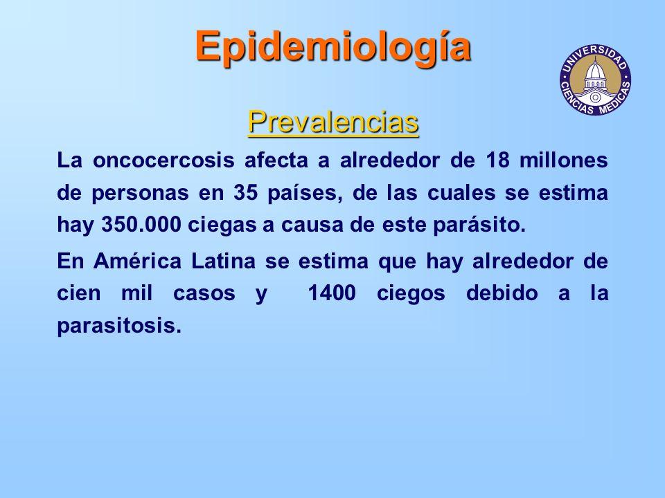 Epidemiología Prevalencias La oncocercosis afecta a alrededor de 18 millones de personas en 35 países, de las cuales se estima hay 350.000 ciegas a ca