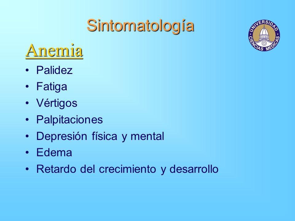 Sintomatología Anemia Palidez Fatiga Vértigos Palpitaciones Depresión física y mental Edema Retardo del crecimiento y desarrollo