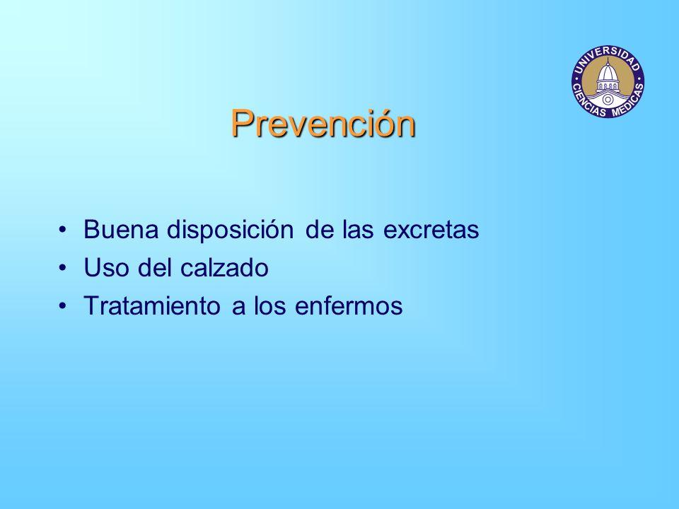 Prevención Buena disposición de las excretas Uso del calzado Tratamiento a los enfermos