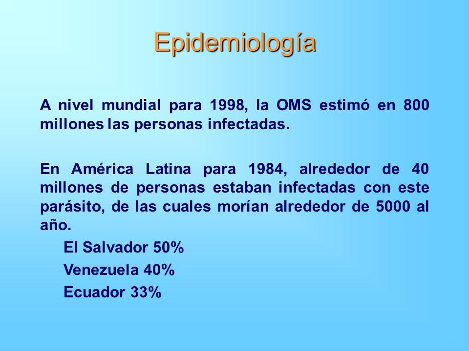 Epidemiología A nivel mundial para 1998, la OMS estimó en 800 millones las personas infectadas. En América Latina para 1984, alrededor de 40 millones
