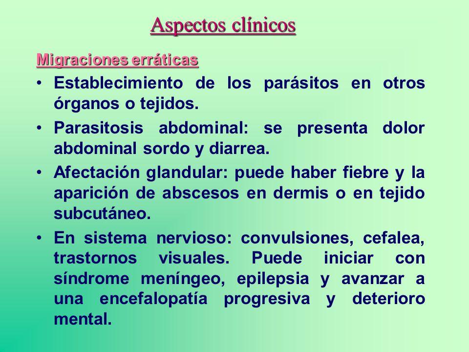 Aspectos clínicos Migraciones erráticas Establecimiento de los parásitos en otros órganos o tejidos. Parasitosis abdominal: se presenta dolor abdomina