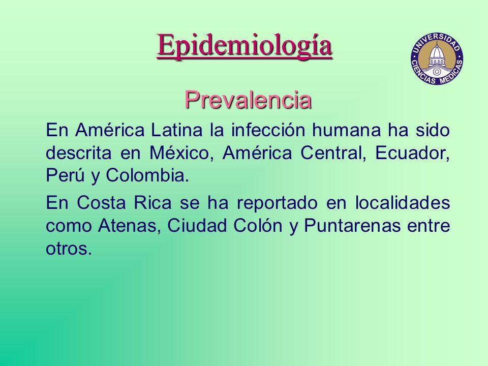 Epidemiología Prevalencia En América Latina la infección humana ha sido descrita en México, América Central, Ecuador, Perú y Colombia. En Costa Rica s