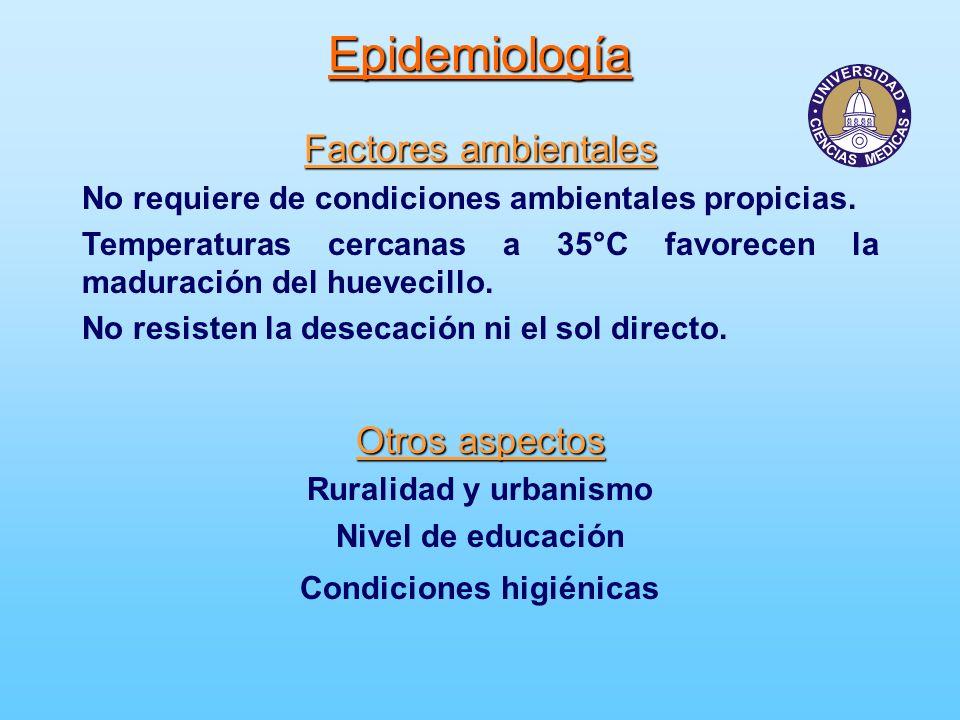 Epidemiología Factores ambientales No requiere de condiciones ambientales propicias. Temperaturas cercanas a 35°C favorecen la maduración del huevecil