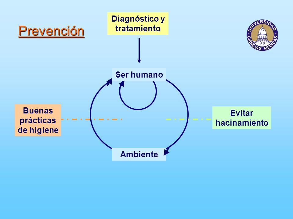 Prevención Ambiente Buenas prácticas de higiene Evitar hacinamiento Diagnóstico y tratamiento Ser humano