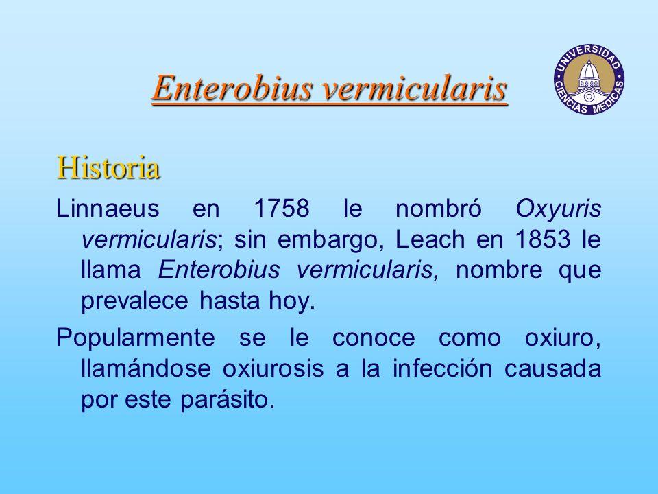 Enterobius vermicularis Historia Linnaeus en 1758 le nombró Oxyuris vermicularis; sin embargo, Leach en 1853 le llama Enterobius vermicularis, nombre