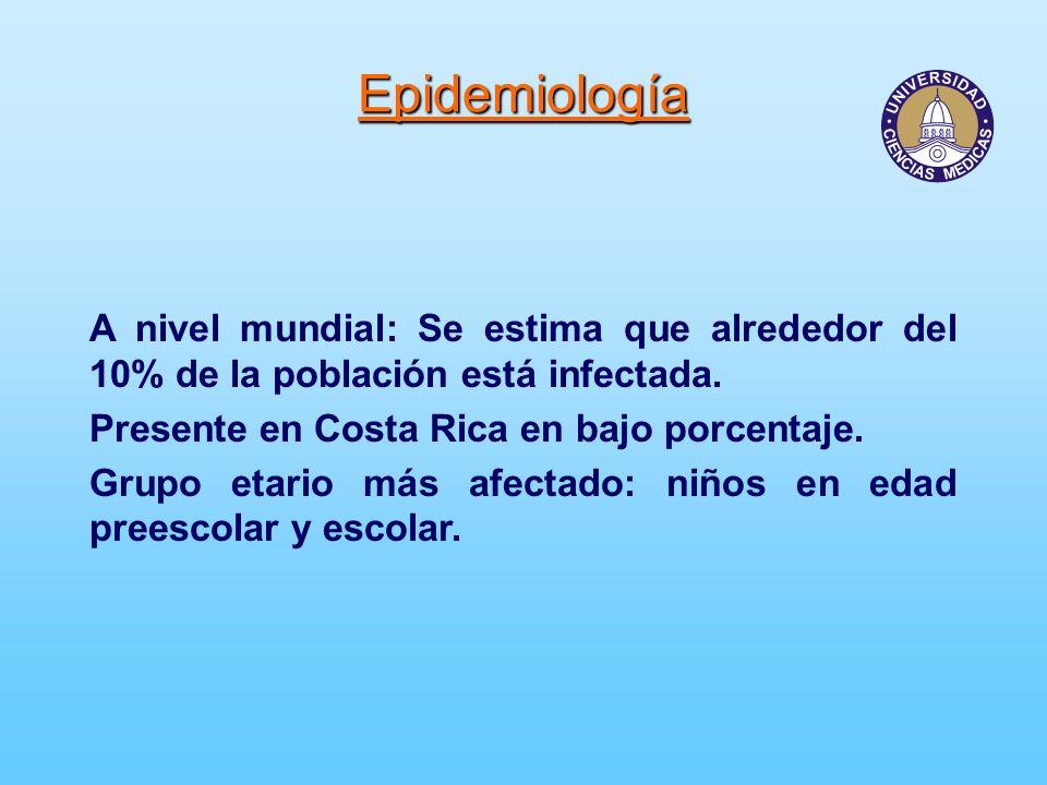 Epidemiología A nivel mundial: Se estima que alrededor del 10% de la población está infectada. Presente en Costa Rica en bajo porcentaje. Grupo etario