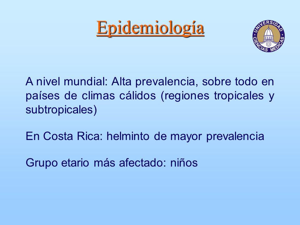 Epidemiología A nivel mundial: Alta prevalencia, sobre todo en países de climas cálidos (regiones tropicales y subtropicales) En Costa Rica: helminto