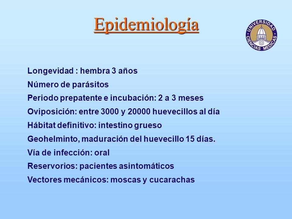 Epidemiología Longevidad : hembra 3 años Número de parásitos Periodo prepatente e incubación: 2 a 3 meses Oviposición: entre 3000 y 20000 huevecillos