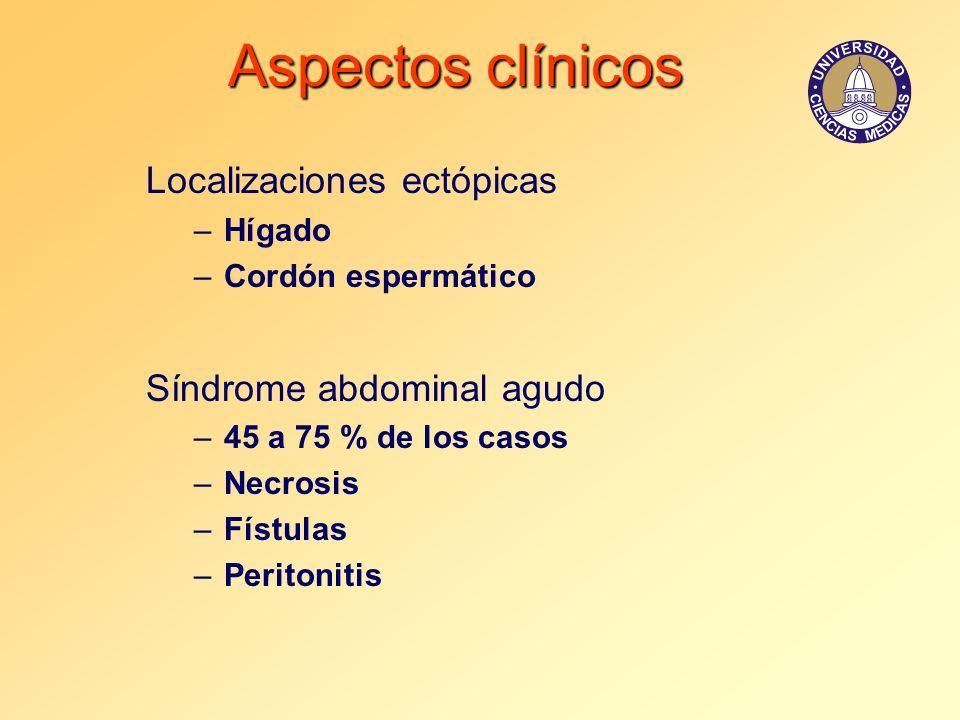 Aspectos clínicos Localizaciones ectópicas –Hígado –Cordón espermático Síndrome abdominal agudo –45 a 75 % de los casos –Necrosis –Fístulas –Peritonit