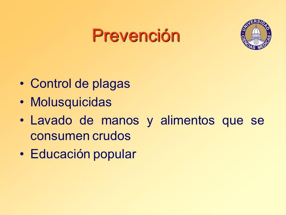 Prevención Control de plagas Molusquicidas Lavado de manos y alimentos que se consumen crudos Educación popular