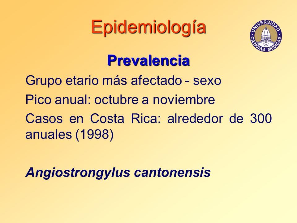 Epidemiología Prevalencia Grupo etario más afectado - sexo Pico anual: octubre a noviembre Casos en Costa Rica: alrededor de 300 anuales (1998) Angios