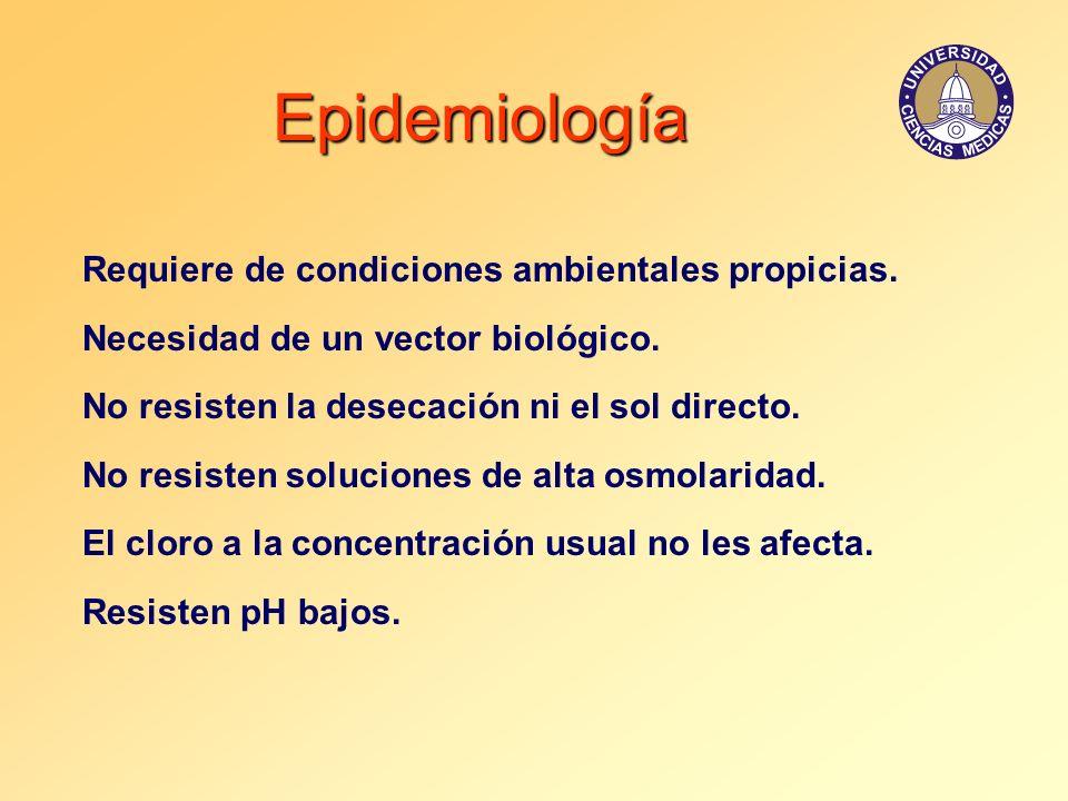 Epidemiología Requiere de condiciones ambientales propicias. Necesidad de un vector biológico. No resisten la desecación ni el sol directo. No resiste