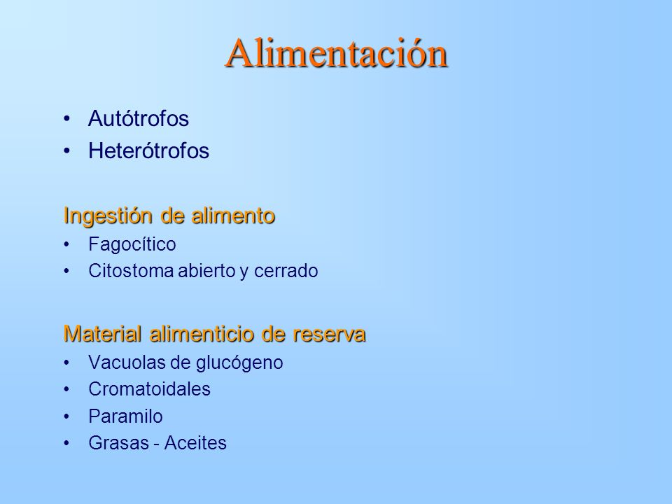 Alimentación Autótrofos Heterótrofos Ingestión de alimento Fagocítico Citostoma abierto y cerrado Material alimenticio de reserva Vacuolas de glucógen