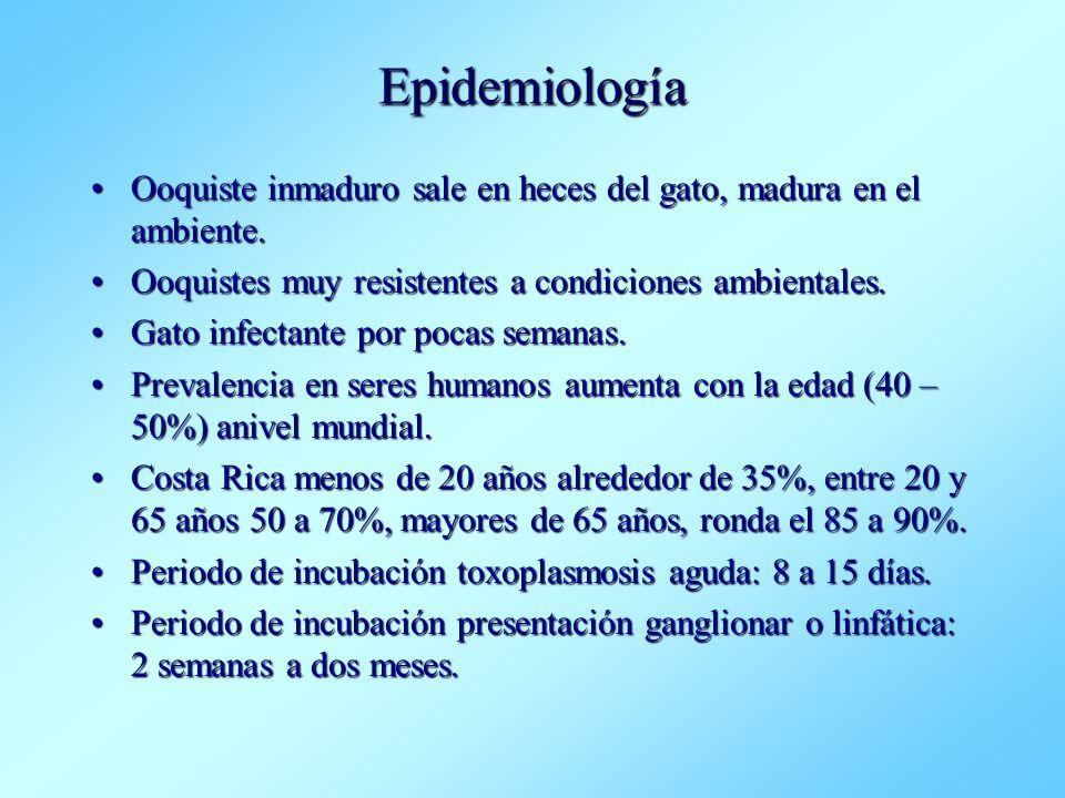 Epidemiología Ooquiste inmaduro sale en heces del gato, madura en el ambiente.Ooquiste inmaduro sale en heces del gato, madura en el ambiente. Ooquist