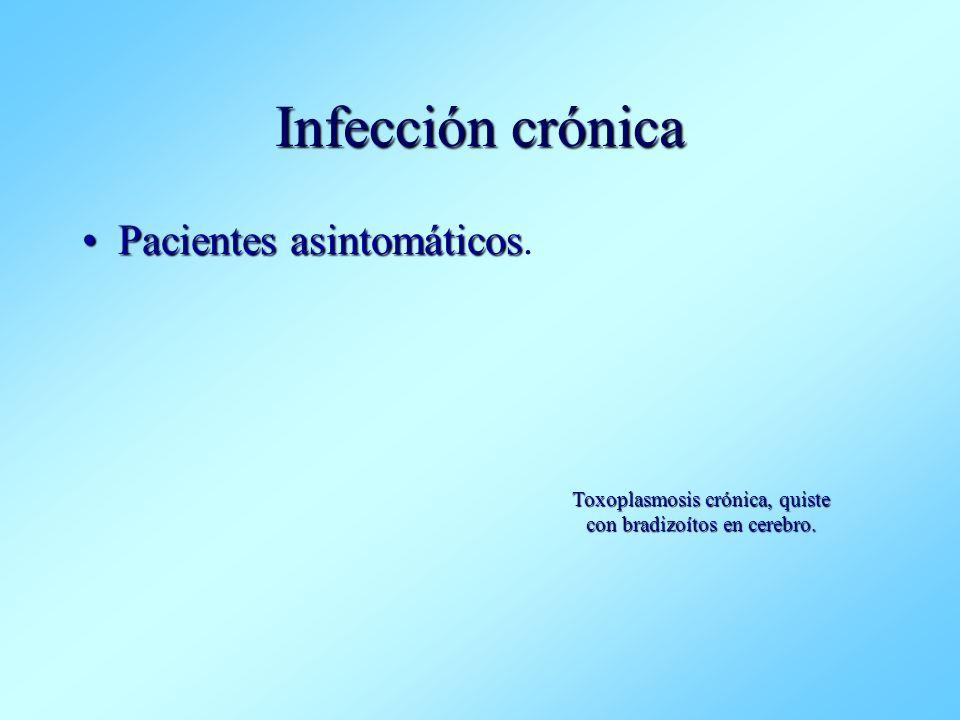 Infección crónica Pacientes asintomáticosPacientes asintomáticos. Toxoplasmosis crónica, quiste con bradizoítos en cerebro.
