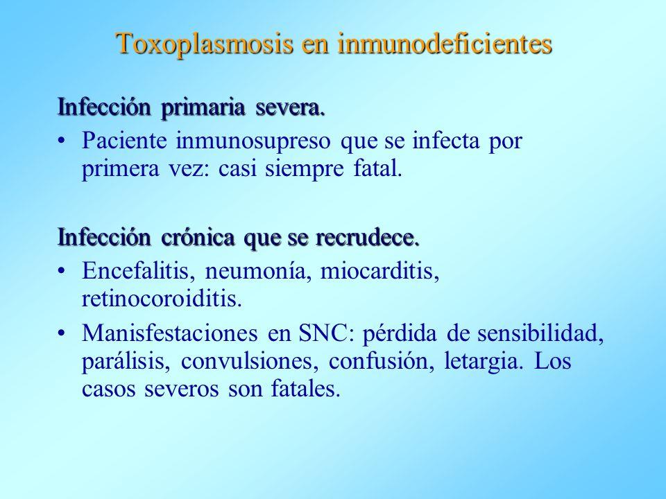Toxoplasmosis en inmunodeficientes Infección primaria severa. Paciente inmunosupreso que se infecta por primera vez: casi siempre fatal. Infección cró