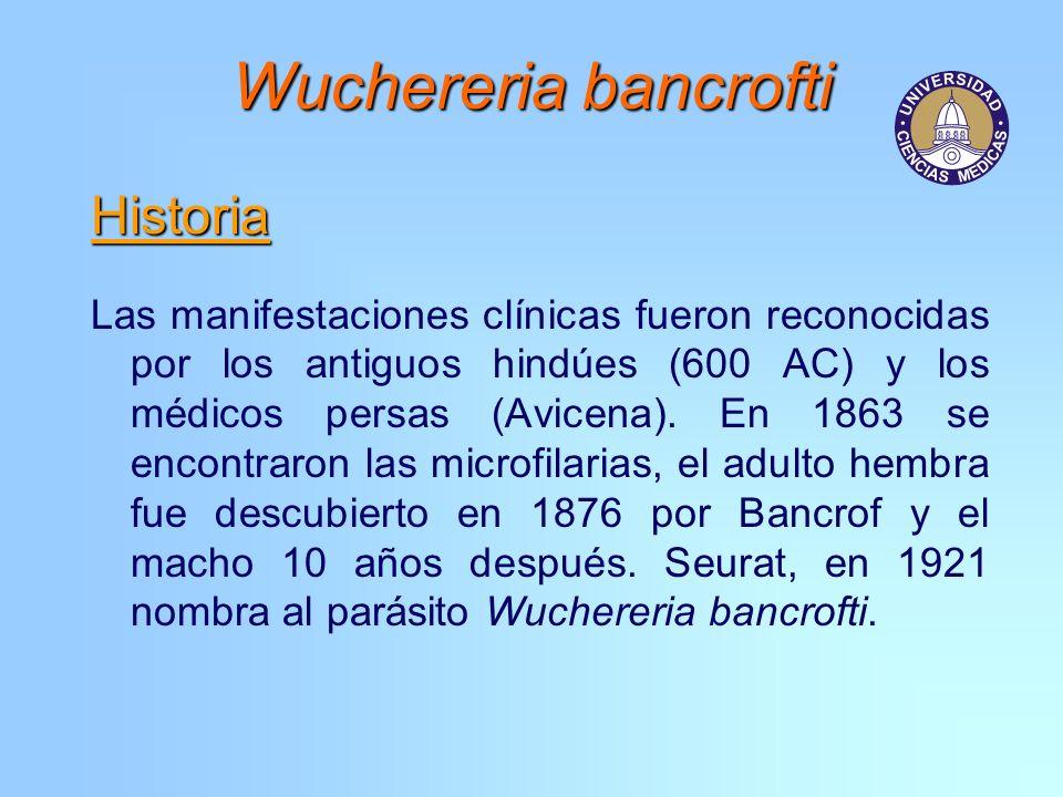 Wuchereria bancrofti Historia Las manifestaciones clínicas fueron reconocidas por los antiguos hindúes (600 AC) y los médicos persas (Avicena). En 186