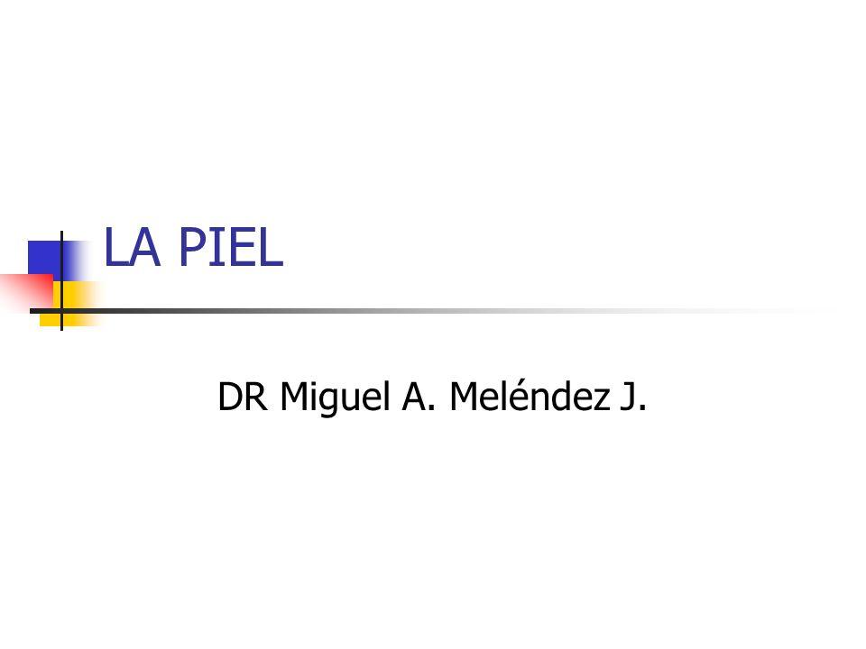 LA PIEL DR Miguel A. Meléndez J.