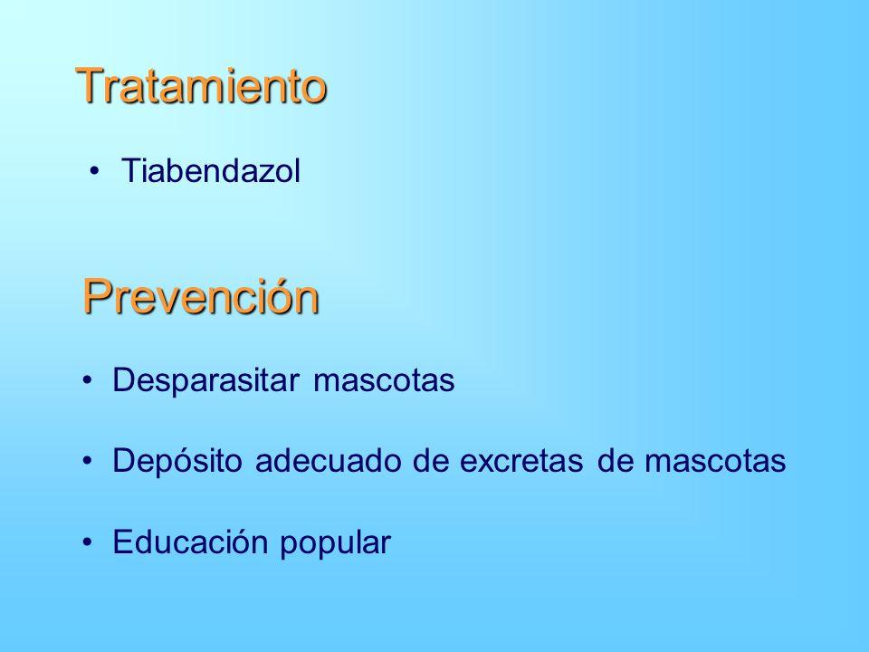 Tratamiento Tiabendazol Prevención Desparasitar mascotas Depósito adecuado de excretas de mascotas Educación popular