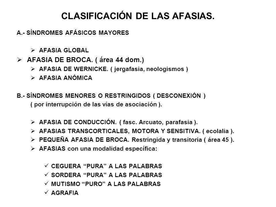 CLASIFICACIÓN DE LAS AFASIAS. A.- SÍNDROMES AFÁSICOS MAYORES AFASIA GLOBAL AFASIA DE BROCA. ( área 44 dom.) AFASIA DE WERNICKE. ( jergafasia, neologis