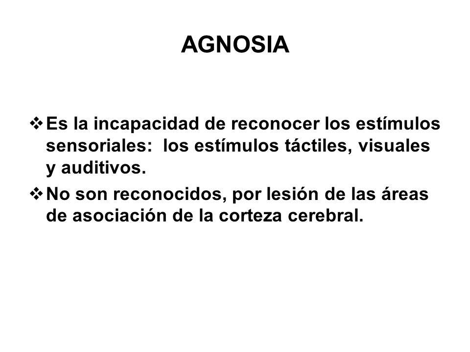 AGNOSIA Es la incapacidad de reconocer los estímulos sensoriales: los estímulos táctiles, visuales y auditivos. No son reconocidos, por lesión de las