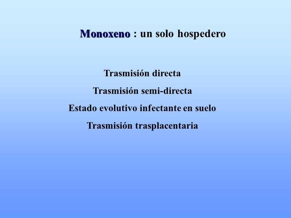 Monoxeno Monoxeno : un solo hospedero Trasmisión directa Trasmisión semi-directa Estado evolutivo infectante en suelo Trasmisión trasplacentaria